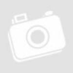 Amiko A4 T2/C Androidos vevő